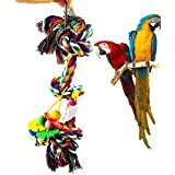 SLB Works Brand New Colorful Cotton Rope Hanging Bird Chew Climbing Toys Parrot Parakeet TOY Pro US