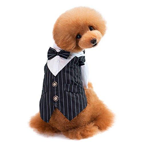Business Kostüm Hunde - Lesypet Fliege für Hunde Kostüm Hund Tuxedo Kostüm für Hunde Katzen Business Suit Kostüm für Haustiere, 2 Chest 16.5