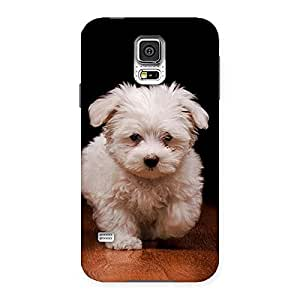 Gorgeous Cute Walking Dog Back Case Cover for Samsung Galaxy S5