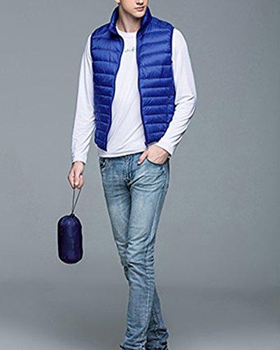 Veste Homme Matelassée Doudoune Sans Manches Gilet Padded Bodywarmer Saphir Bleu