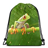 Etryrt Zaino con Coulisse,Borse Sacca,Sacchetto Tree Frogs Drawstring Backpack Bag Shoulder Bags Gym Bag for Adult