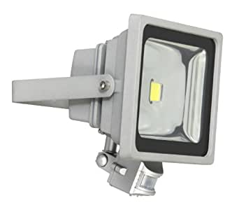 Ranex 30 Watt 230 V LED SMD Floodlight with PIR