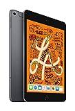 Apple iPad mini (Wi-Fi + Cellular, 256GB) - Grigio siderale (Ultimo Modello)
