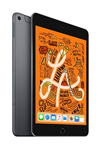 Apple iPad mini (Wi-Fi + Cellular, 256 GB) - Space Grau