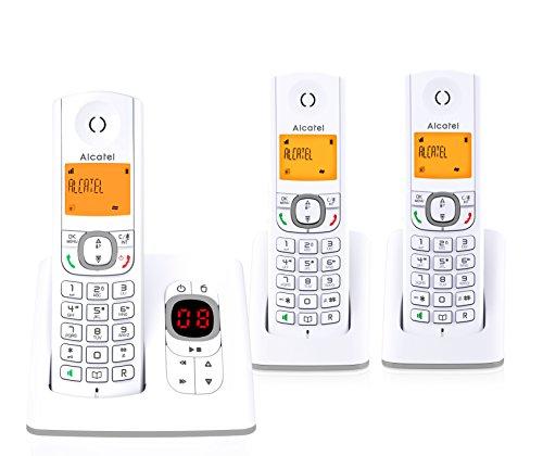 Alcatel F530 - Teléfono (Teléfono DECT, Terminal inalámbrico, Altavoz, 50 entradas, Identificador de Llamadas, Gris, Blanco)