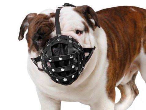 Korb Hund Maulkorb für Boxer, English Bulldog, American Bulldog Sicherer Leder Maulkorb -
