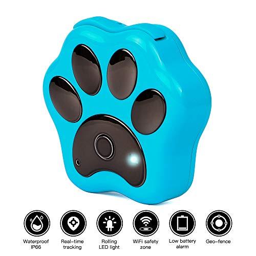 Autopmall Localizador de posicionamiento de Perro GPS para Mascotas WiFi antipérdida Geo-Fence en Tiempo Real Resistente al Agua IP66 con Seguimiento de aplicación Web sin Vida, Azul
