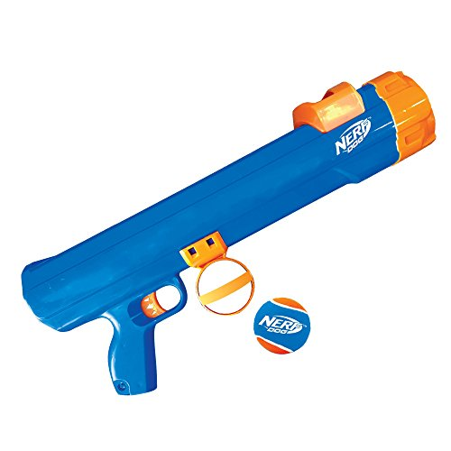 Nerf Dog Toys Reviews