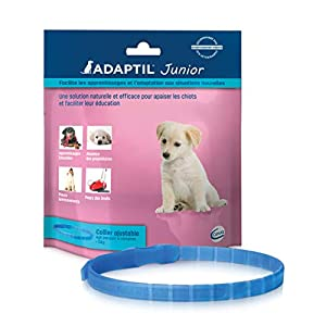 ADAPTIL Junior – Anti-stress pour chien – Collier Pour Chiots