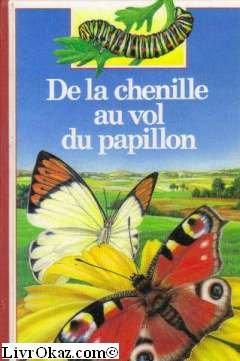 De la chenille au vol du papillon