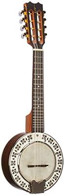 APC bjpt300PSI Banjo Portugués