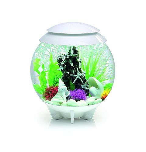 Oase biOrb Deko Aquarium Halo 30 mit LED - 30 Liter Weiss