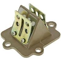 Roller Membranblock AH Morini 50 AC Motoren für Derbi Predator 50 AC LC