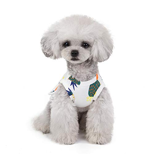 JKRTR Sommer Hunde Katze kleidet 2019,Ananas Print Kleid Kleidung Lace atmungsaktiv Kleid(Weiß,L)