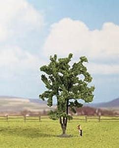 Noch 25850  - Acacia importado de Alemania