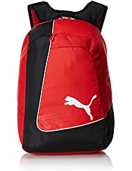 PUMA Rucksack evoPOWER Football Backpack