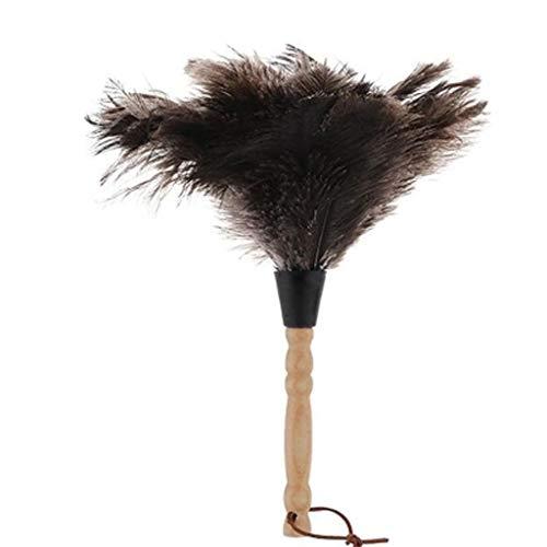 ZHANGY Staubwedel - mit strapazierfähigem Holzgriff, Handstaubsauger - perfekt um Deckenventilatoren, Armaturenbretter, Bücherregale, Tierhaare zu Reinigen