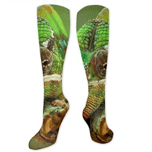 ouyjian Chameleon Reptile Lizard Grün Polyester Baumwolle Über Knie Hohe Socken Trendy Unisex Oberschenkelstrümpfe Cosplay