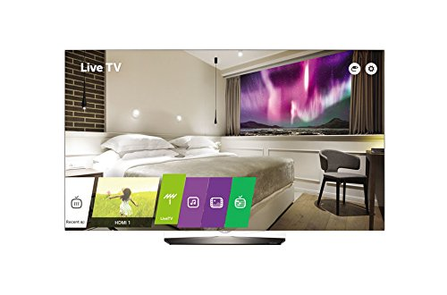 LG Hospitality Display 65EW961H LED-TV 165 cm (65