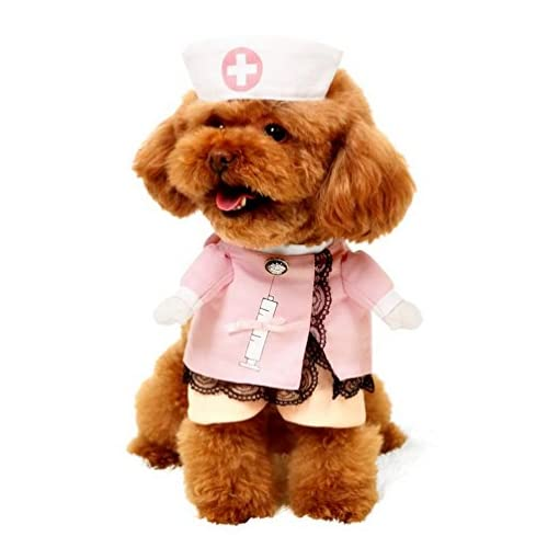 Pegasus-infermiere-Cane-Costume-con-cappello-cosplay-Dog-Coat-fiocco-pizzo-tutte-le-stagioni-rosa-per-piccolo-gatto-cane-cucciolo
