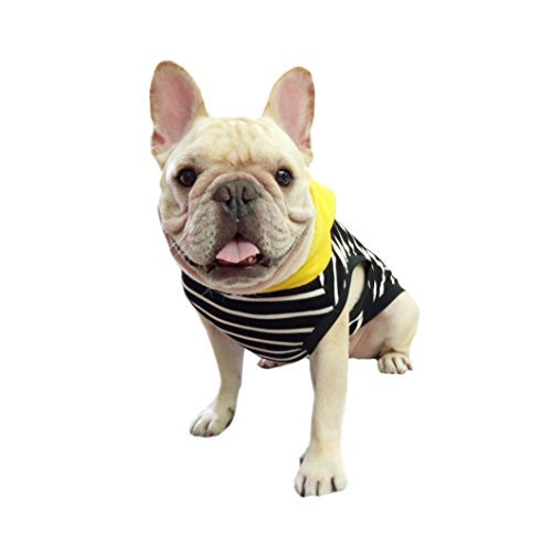 Frenchie Pet Apparel nero con strisce gialle con cappuccio per french Bulldog o Pug Wear