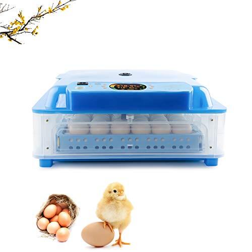 WishY Vollautomatische Brutmaschine 64 Eier Brutapparat Flächenbrüter Inkubator Brutkasten