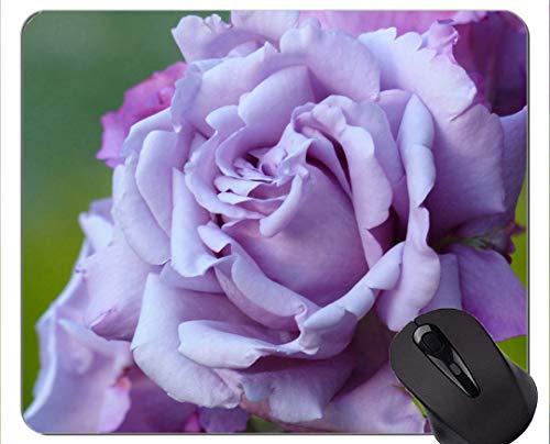 Spiel-Mäusematte, purpurrote Blumen-Natur-Makrorose - genähte Ränder
