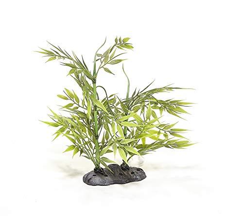 Pistachio Pet – Hermosa Planta Realista Acuario