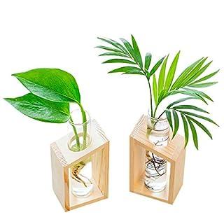 Cikuso Vase en Tube à Essai en Verre De Cristal dans Un Support en Bois Pots De Fleurs pour Plantes Hydroponiques Décoration De Jardins De La Maison