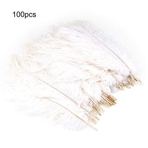 bvnmghjbmghj 100 Teile/Satz 20-25 cm Schöne Luxus Stil Straußenfedern DIY Hochzeit Dekorative Feiern Federn - Weiß