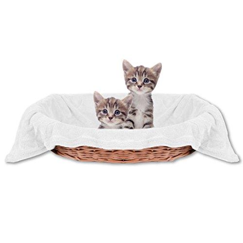 Haustierdecke Katzendecke Kuscheldecke Tierdecke , angenehm und super weich in vielen verschiedenen Farben erhältlich (60x80 cmweiß - creme)
