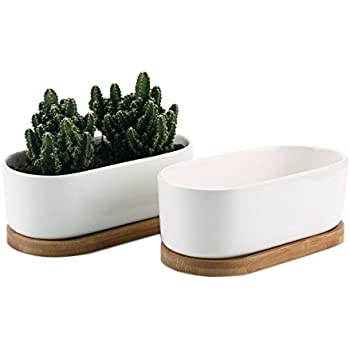 White Ceramic Rectangular Cactus Tray Planter 34 Cm Long