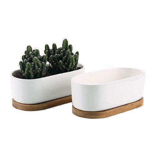 T4U 17CM Modern Oval Design Keramik Sukkulenten Töpfe Kaktus Pflanze Töpfe klein Blumentöpfe mit Bambusuntersetzer Weiß 2er Set