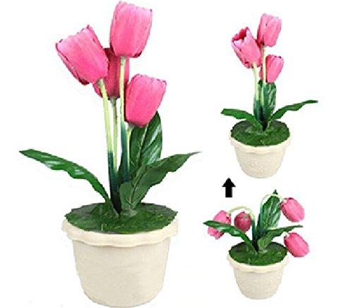 Gowe Regeneration Tulip, Animate Tulip/Stage Flower Magic-Traum von der Tulip Tulip Tulip Wiedergeburt Sleep Tulip Magic