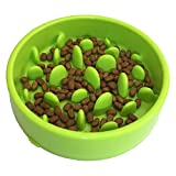 Slow Feeder Dog Bowl - Slow Eating Bowl for Dog and Cat, Non-Slip, Large (Green)