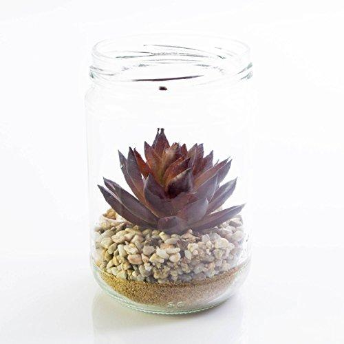 artplants – Künstliche Agave im Glas, rotgrün, 13cm, Ø8cm – Deko Sukkulenten/Kunst Jahrhundertpflanze