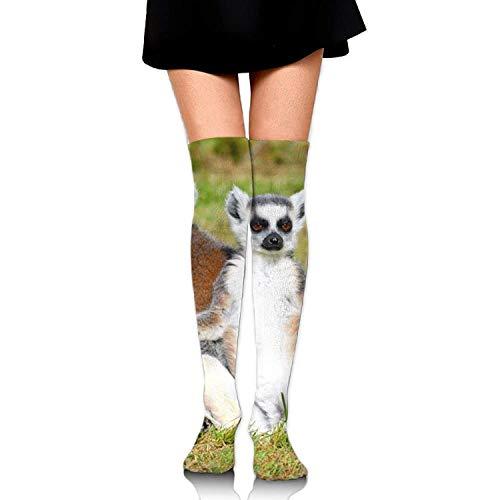 Gped Kniestrümpfe,Socken,Two Ring Tailed Lemurs Leisure Crew Top Socks,Tube Over Knee Nursing Compression Long Socks,3D Printed Sports for Girls&Women 50 - Ring Tailed Lemur Kostüm