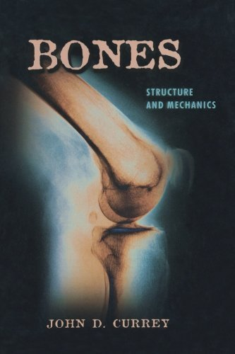 Bones: Structure and Mechanics by Currey, John D. (2006) Paperback