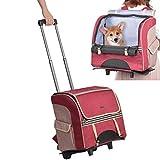 Hivexagon Mochila con Ruedas extraíble Bolsa de Viaje para Mascotas Bolsa para Perros/Gatos de hasta 16.5 Libras para Exteriores, Picnic, Compras y más PT046