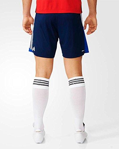 adidas Herren Regista 16 Shorts Dark Blue/White/Bold Blue