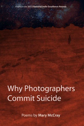 why-photographers-commit-suicide-english-edition