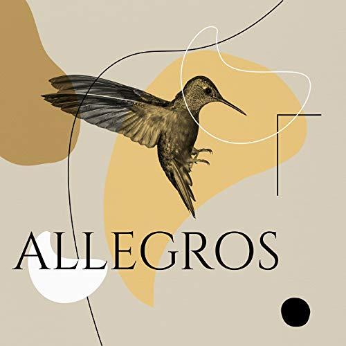 Cello Concerto in A Major, Wq. 172: III. Allegro assai Japan Allegro