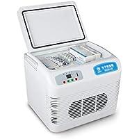 Ren Chang Jia Shi Pin Firm Tragbarer Kühlschrank des Kühlschranks des Kühlschranks des Kühlschranks des Kühlschranks beweglicher Nach Hause tragbarer Kühlschrank