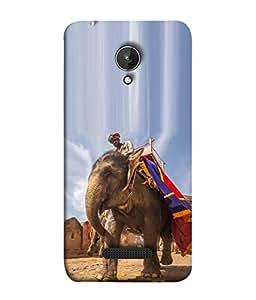 PrintVisa Designer Back Case Cover for Micromax Canvas Spark Q380 (The Elephant Over The Fort Design)