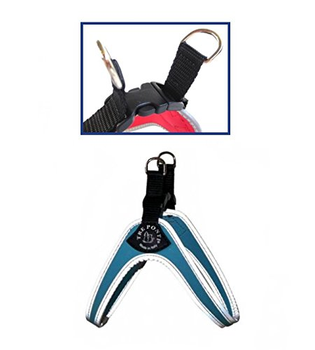 pettorina-tre-ponti-easy-fit-con-chiusura-in-plastica-dal-colore-azzurro-con-bordo-catarifrangente-t