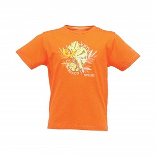 regatta-great-outdoors-jungen-kurzarm-t-shirt-wildshores-bugle-7-8-jahre-128-magma-orange