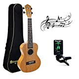 Best Concert Ukuleles - Mahogany Concert Ukulele Beginners, Strong Wind 23 Inch Review