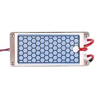 DSstyles Portable Double Integrated Ceramic Ozonizer Purifier Honeycomb Alternating Current Ozone Generator for AC220V10GC