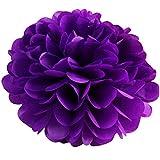 BZLine Seidenpapier Pompons Blumen Ball Dekorpapier Kit für Geburtstag, Hochzeit, Baby Dusche, Parteien, Hauptdekorationen, Partei Dekoration - 10 Stück (Lila)