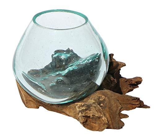 Balibarang-Shop Geschenk Deko Gamal Wurzelholz Glasvase Ø Glas 10 cm Wurzel Holz Teakholz Vase Glas XS -